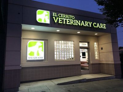 Clinic Front At Night